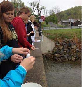 APES - Water Testing
